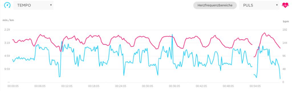 TomTom Runner 2 Cardio Test: TomTom MySports Diagramm